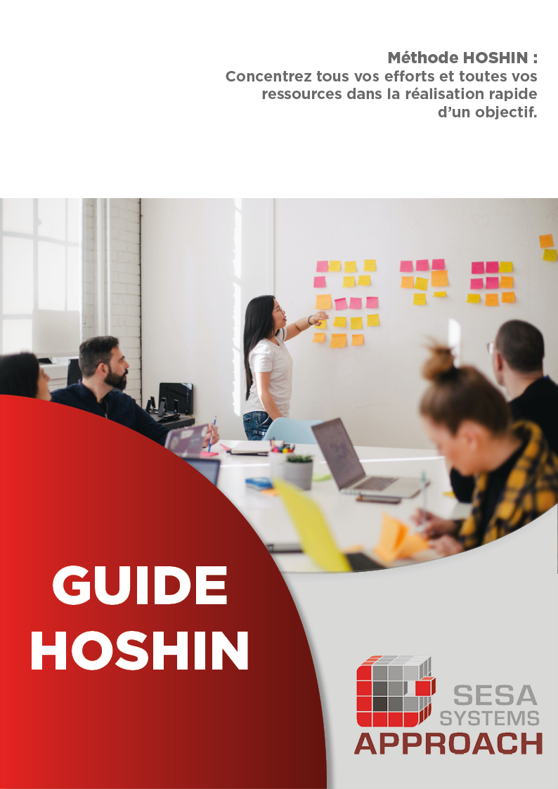 Guide HOSHIN